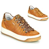 Zapatos Mujer Zapatillas bajas IgI&CO SHOUHAI Ocre