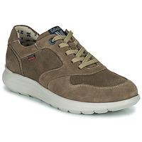 Zapatos Hombre Zapatillas bajas CallagHan WASSER Beige