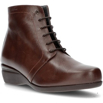 Zapatos Mujer Botines Dtorres ES  OTTAWA TABACO