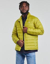 textil Hombre Plumas Levi's OASIS Verde