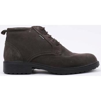 Zapatos Hombre Botas de caña baja Imac  Marrón