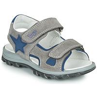 Zapatos Niño Sandalias Primigi GRIMMI Gris / Azul