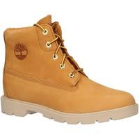 Zapatos Niños Botas de caña baja Timberland A28Z3 CLASSIC Beige