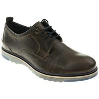 Zapatos Hombre Derbie T2in CORDON/BLUCHER  MARRON Marrón