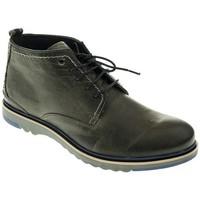 Zapatos Hombre Botas de caña baja T2in BOTIN HOMBRE  MARRON Marrón