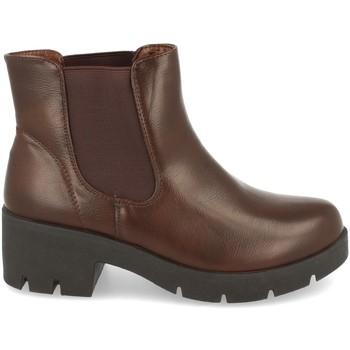 Zapatos Mujer Botines Clowse 8B991 Marron