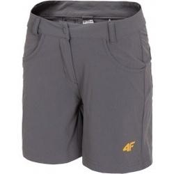 textil Mujer Shorts / Bermudas 4F Womens Functional Shorts gris