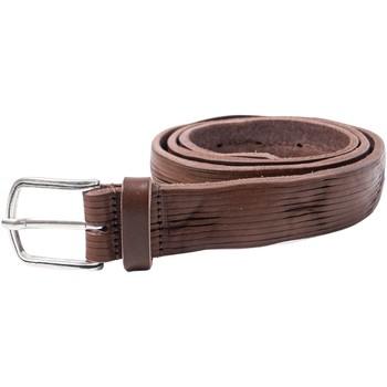 Accesorios textil Hombre Cinturones Hydra Clothing PLM07 Marrone