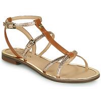 Zapatos Mujer Sandalias JB Martin 1GRIOTTES Marrón