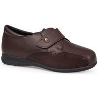 Zapatos Mujer Derbie & Richelieu Calzamedi S  DIABETICO 0708 MARRON