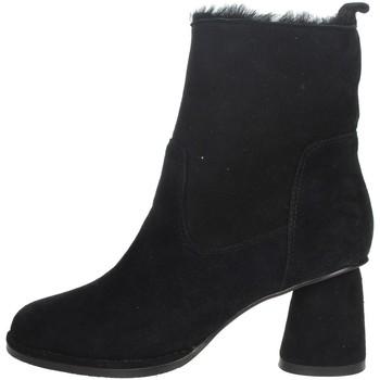 Zapatos Mujer Botas de caña baja Nina Capri IC-141 Negro
