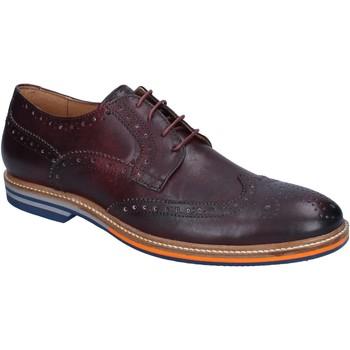 Zapatos Hombre Derbie & Richelieu Herman & Sons BJ33 Borgoña