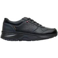 Zapatos Mujer Zapatillas bajas Joya DE  DYNAMO 3 SR W BLACK