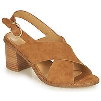 Zapatos Mujer Sandalias Minelli CASIMIERA Marrón