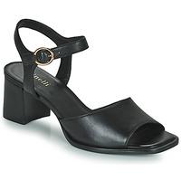 Zapatos Mujer Sandalias Minelli TURINA Negro