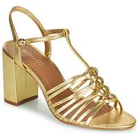 Zapatos Mujer Sandalias Minelli THERENA Oro
