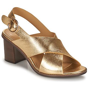 Zapatos Mujer Sandalias Minelli THIVIYA Oro