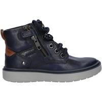 Zapatos Niño Botas Geox J947SA 0JHMW J RIDDOCK Azul