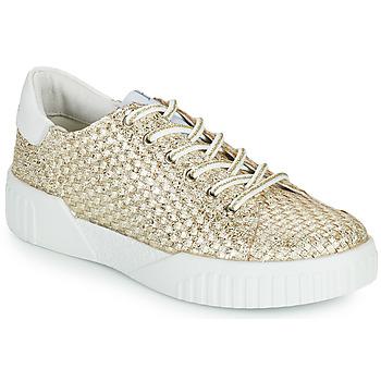 Zapatos Mujer Zapatillas bajas Café Noir JANISA Blanco / Oro