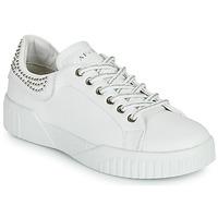 Zapatos Mujer Zapatillas bajas Café Noir THINA Blanco