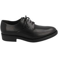 Zapatos Hombre Derbie Sergio Serrano 9003 NEGRO Negro