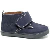 Zapatos Niño Botas de caña baja Ani BOTIN NIÑO  MARINO Azul
