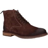 Zapatos Hombre Botas de caña baja Kickers 828860 ALPHATO Marr?n