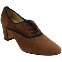 Zapatos Mujer Derbie Cx DADO SERRAJE Marrón