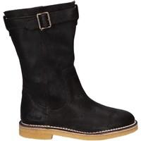 Zapatos Mujer Botas a la rodilla Kickers 828030 KWORK Marr?n