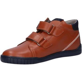 Zapatos Niños Botas de caña baja Kickers 830130 WINOPO Marr?n