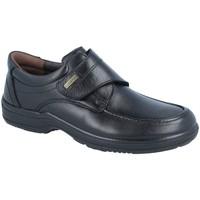 Zapatos Hombre Derbie Luisetti 20412ST NEGRO