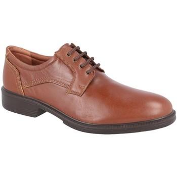 Zapatos Derbie Luisetti 28704ST CUERO