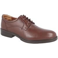 Zapatos Hombre Derbie Luisetti 28704ST COÑAC
