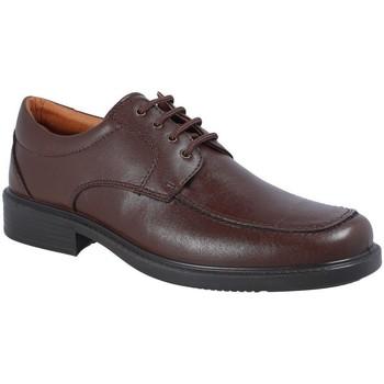 Zapatos Hombre Derbie Luisetti 0103 MARRON