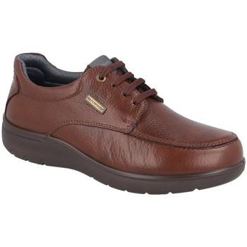 Zapatos Hombre Derbie Luisetti 31002ST-W MARRON