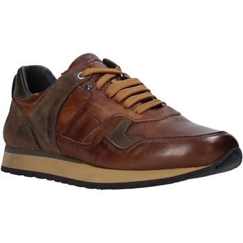 Zapatos Hombre Zapatillas bajas Exton 591 Marrón