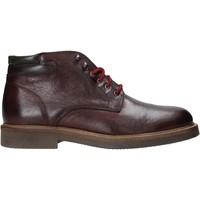 Zapatos Hombre Botas de caña baja Exton 852 Otros