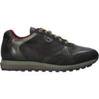 Zapatos Hombre Zapatillas bajas Exton 340 Verde