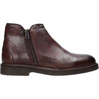 Zapatos Hombre Botas de caña baja Exton 851 Marrón