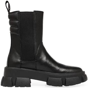 Zapatos Mujer Botas de caña baja Steve Madden SMSTRANSAM-BLK Negro