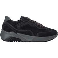 Zapatos Hombre Zapatillas bajas IgI&CO 6142600 Azul