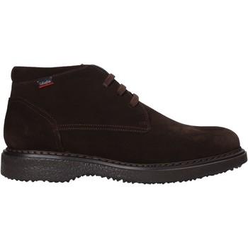 Zapatos Hombre Botas de caña baja CallagHan 12302 Marrón
