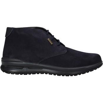 Zapatos Hombre Botas de caña baja Valleverde VL53823 Azul
