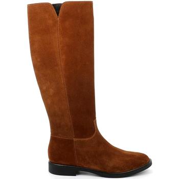 Zapatos Mujer Botas urbanas Grunland ST0466 Marrón