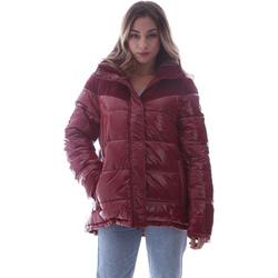 textil Mujer Plumas Invicta 4432435/D Rojo