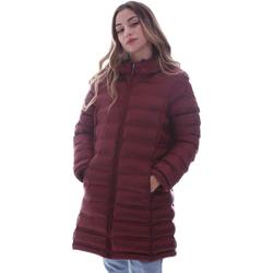 textil Mujer Plumas Invicta 4432425/D Rojo