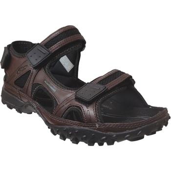 Zapatos Hombre Sandalias Allrounder by Mephisto Regent Castaño