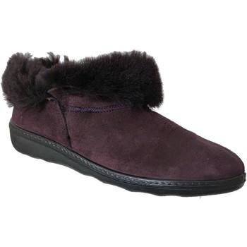 Zapatos Mujer Pantuflas Romika Westland Avignon 102 púrpura