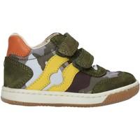 Zapatos Niño Zapatillas altas Falcotto 2015271 02 Verde