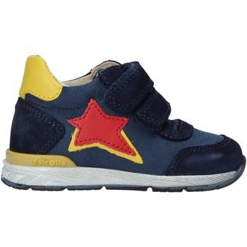 Zapatos Niños Deportivas Moda Falcotto 2015450 02 Azul
